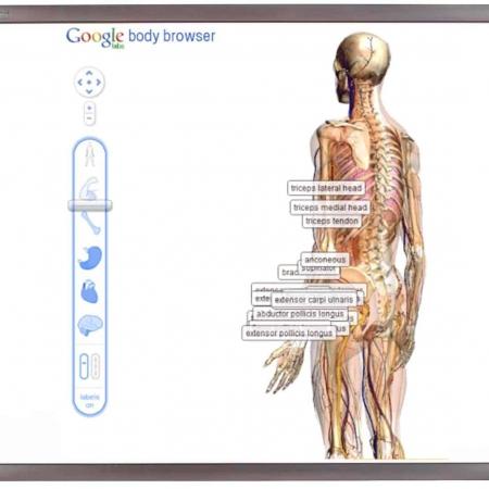 dotykowa tablica interaktywna