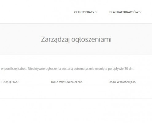 panel-pracodawcy-portal-rekrutacyjny-495x400 Portal rekrutacyjny dla Aeiro